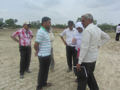 Farmers' participatory sodic soil reclamation through integration of gypsum, pressmud and sodicity tolerant varieties improved livelihoods of resource poor farmers